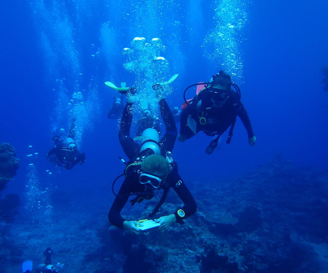 A volunteer in the Pacific collects scientific data during a dive for shark research.